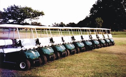10 buggies available to hire
